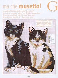 * Cat Cross Stitches, Cross Stitch Needles, Beaded Cross Stitch, Cross Stitching, Cross Stitch Embroidery, Cross Stitch Boards, Cross Stitch Art, Cross Stitch Animals, Cross Stitch Patterns