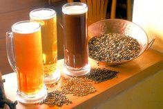 Como hacer tu propia cerveza paso a paso.
