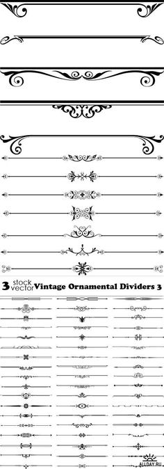 Vectors - Vintage Ornamental Dividers 3