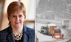 Haulage industry fury after Sturgeon blames them for roads chaos