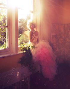 Miss Aniela photography