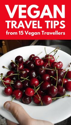 Thinking of starting a vegan travel adventure? Take these essential vegan tips from fifteen currently on the road travellers.