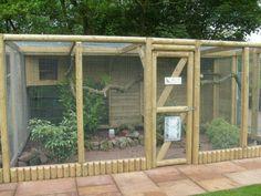 27 New Ideas for pet bird cage diy chicken coops Backyard Chicken Coops, Diy Chicken Coop, Chickens Backyard, Pet Bird Cage, Bird Cages, Outdoor Cat Enclosure, Chicken Coop Designs, Bird House Kits, Bird Aviary
