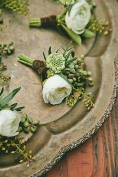 Boutonnière - white ranunculus, scabies, seeded eucalyptus