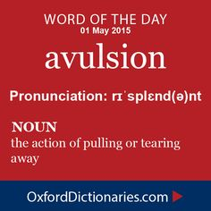 avulsion (noun): The action of pulling or tearing away. Word of the Day for 1 May 2015. #WOTD #WordoftheDay #avulsion