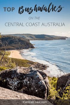 Bushwalk on the Central Coast NSW. Short day walk guide from a local. Walks for everyone. Australia Destinations, Amazing Destinations, Hiking Places, Places To Travel, Coast Australia, Australia Travel, Cool Places To Visit, Places To Go, Travel Oz