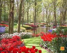 ilkbahar manzara fotoğrafları ile ilgili görsel sonucu