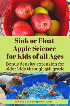 This Apple Sink or Float activity is a fun STEM lesson you can do with kids in preschool, and there is an extension density lesson that can be adapted for students up through middle school. Apple Activities, Educational Activities For Kids, Hands On Activities, Science For Kids, Science Activities, Fun Learning, Toddler Activities, Scientific Skills, Sink Or Float
