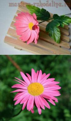 Мастер-класс по цветам из фоамирана: Розовая ромашка