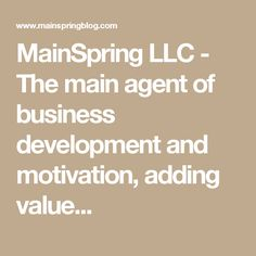 MainSpring LLC - The main agent of business development and motivation, adding value...