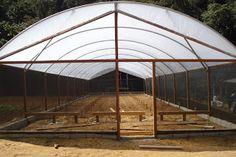 Idéias para campos e jardins: Viveiro para Plantas e Mudas