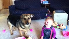 Baby thinks dog popping bubbles is hysterically funny (VIDEO) Funny Babies Laughing, Laughing Baby, Coca Cola, Hysterically Funny, Branding, Baby Sister, Dog Show, Marketing, Cool Baby Stuff