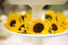 Sunflower Wedding Theme - a sunflower wedding day can be nothing short of cheerful and sunny - regardless of what the weather man has to say! Yellow Grey Weddings, Gray Weddings, Wedding Yellow, Wedding Book, Diy Wedding, Wedding Day, Wedding Backyard, Wedding Flowers, Wedding Themes