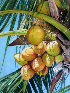 """Contemporary Painting - """"Sanibel Coconuts"""" (Original Art from Judy Nunno). Watercolor"""
