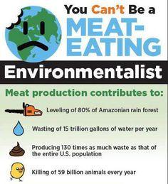 vegan: You Can't Be A Meat-Eating Environmentalist Why Vegan, Vegan Vegetarian, Pesco Vegetarian, Vegan Raw, Vegan Facts, Vegan Quotes, Vegan Memes, Save Our Earth, Vegan Animals