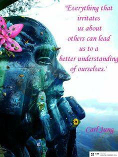 Everything that irritates us about others can lead us to a better understanding of ourselves - Carl Jung