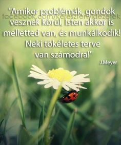 """""""Isten akkor is melletted van. Staying Positive, Life Quotes, Positivity, Christian, Quotes About Life, Quote Life, Living Quotes, Quotes On Life, Christians"""