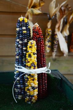diy: indian corn decorations