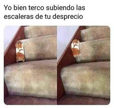 Funny Spanish Memes, Spanish Humor, Memes Estúpidos, Funny Memes, Ugly Meme, Glass Bottle Crafts, Trending Topics, Flower Wallpaper, Lol