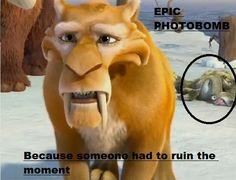 Epic photo bomb!