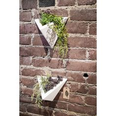 Bring the best parts of the outdoors indoors with this beautiful, modern, wall-mounted planter. Excellent for succulents, air plants, and any other indoor-friendly plant! I designed this planter in my