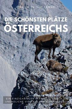 Ob am Gipfel eines Berges oder an einem glasklaren Seen.  Österreich hat alles -auf engstem Raum.  Vielfalt pur - Natur und Kultur vom Feinsten. Seen, Movies, Movie Posters, Culture, Destinations, Films, Film Poster, Cinema, Movie