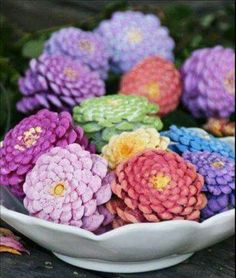 Pine cones painted like Zinnia flowers. Makes a beautiful center piece.  Dry out pine cones before painting. Line a cookie sheet with aluminum foil. Bake pine cones at 200° for 30 minutes. This will kill any bugs and melt any sap. It will also allow the pine cones to open up beautifully. Let them cool over night before painting.