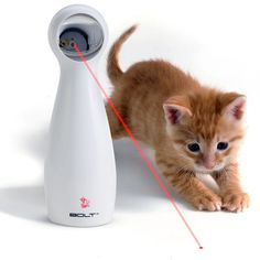 The FroliCat BOLT endlessly entertains even the laziest cat with automatically-generated red laser patterns.  Simply hold BOLT in your hand or place it on a flat surface, turn it on and watch your cat pounce, chase, and bat at the exciting laser patterns.
