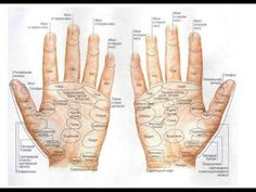 Reflexology in Action - massaging fingers - Helping around the body Yun Yun, American Indian Girl, Heart Anatomy, Witchcraft For Beginners, Palm Reading, Palmistry, Pressure Points, Reflexology, First Aid