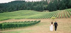 Wine Wedding Wednesday: The Vineyard Wedding! #WW #Wine
