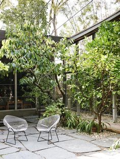Courtyard heaven, with the Knoll Bertoia Side Chair.