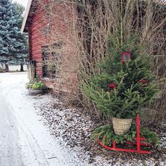 Country Living - Christmas
