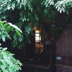によるInstagramの写真ficklekitten - . An apartment in west village.  There is no sigh of the rain stopping. . . あるアパートメントの窓辺。どうやら雨は止みそうにありません。 .