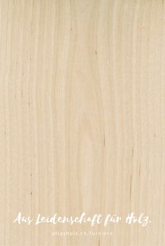 Furniere Birke | Veneers Birch  | Botanischer Name/Botanical Name: Betulla spp. Birch, Types Of Wood