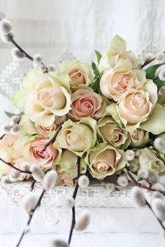 .růže