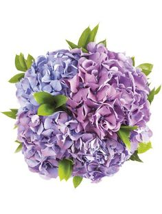 Purple Hydrangea Bouquet for bridesmaids?
