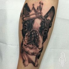 The 10 Coolest Boston Terrier Tattoo Designs In The World