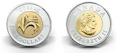 Canadian Coin Collection: 2008 - Anniversary of the Founding of Quebec City Canadian Coins, Mint Coins, Dollar Coin, Quebec City, Coin Collecting, Anniversary, Canada, Money, Metal