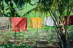 clothes hung to dry - Sheets are hung to dry on a clothes line in Southern India