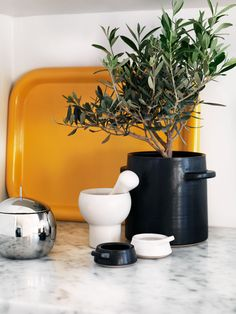 Ingerstedt - love yellow in a white kitchen Exterior Design, Interior And Exterior, House On The Rock, Interior Photography, Color Mixing, Home Kitchens, Kitchen Dining, Planter Pots, Editorial