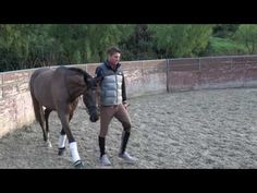How to teach the piaffe in-hand - YouTube