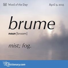 "Definition: mist or fog. ""the birds rise like brume"". Origin: early century: from French, from Latin bruma 'winter. The Words, Fancy Words, Weird Words, Words To Use, Pretty Words, Cool Words, Unusual Words, Unique Words, Foreign Words"