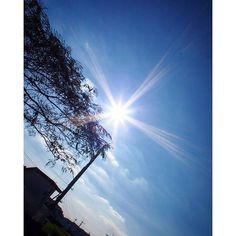 【syota330】さんのInstagramをピンしています。 《久々の太陽  #ファインダー越しの私の世界  #一眼レフ #山 #バイク #ツーリング #記録 #写真好きな人と繋がりたい #trip #sonyalpha #おしゃれ #Kawasaki #森 #photography #自然 #green #forest #カメラマンさんと繋がりたい #japan #太陽 #motorcycle #park #sun #selfie #japanese #olympus #wood #flowers #nature #花》