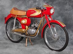 Atala freccia d oro 1953 Moped Scooter, Cafe Racer Motorcycle, Motorbikes, Bicycle, Vehicles, Classic, Motorcycles, Photography, Mopeds