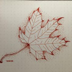 Inktober Day 6! A fall leaf made with my Lamy Vista (F) filled with #Noodlers Cayenne. @gouletpens #mondaymatchupgiveaway #mondaymatchup #inktober #inktober2015 #inktoberday6 #ink #lamy #leaf #cayenne #drawing #fpgeeks #fall  (at American Fork, Utah)
