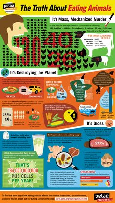 stop eating animals; good for you, good for nature and you save lives