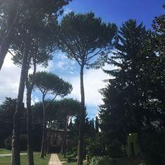 Marymount International School Rome Photos for #amolamiascuola tag in instagram | instagood.photography by @taniazaynab