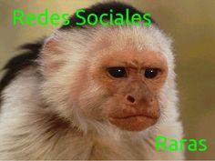 Mi artículo esta semana en #BlogZurcodraciR: Las redes sociales más raras de Internet