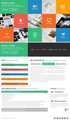 online resume wordpress themes