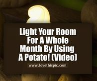 Light Your Room For A Whole Month By Using A Potato! (Video)